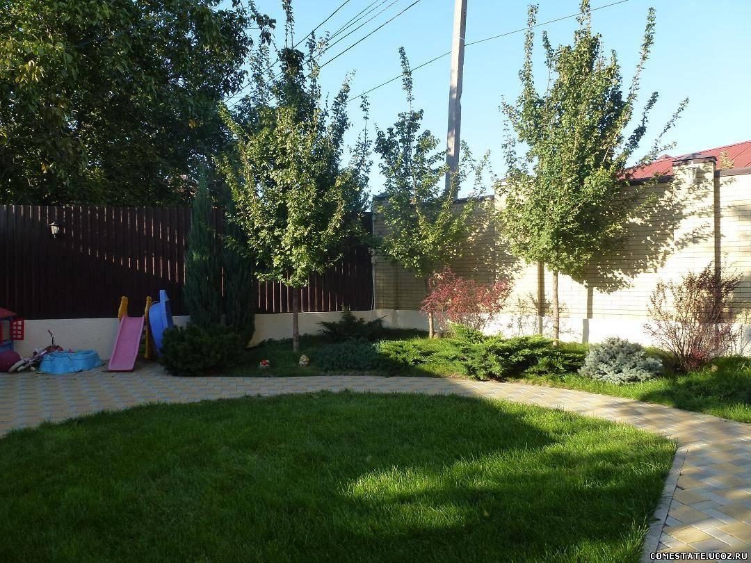 толстолоб в ростовской области